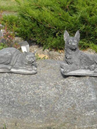 KissaSaksanpaimenkoira