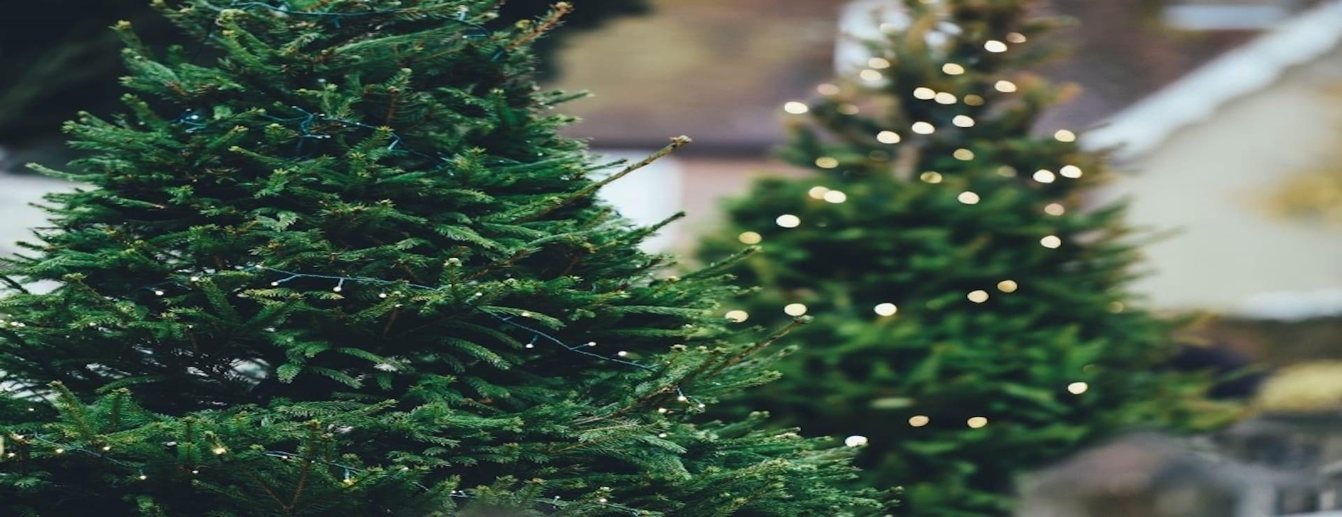 Kanta-asiakkaiden joulukuuset kotiovelle