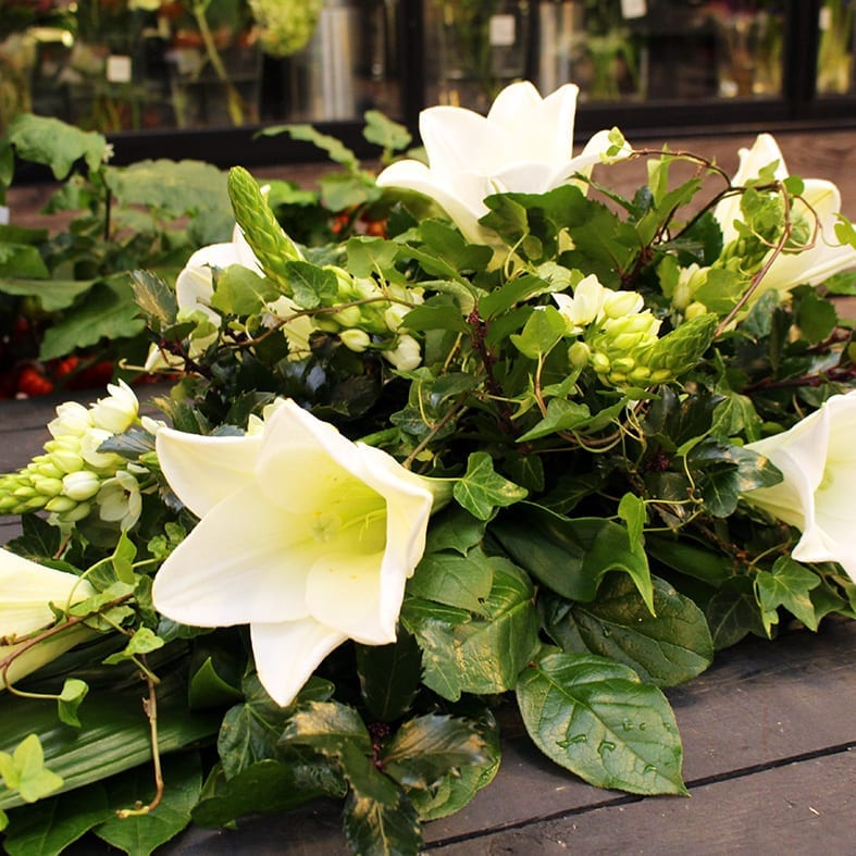 Surulaite liljoilla
